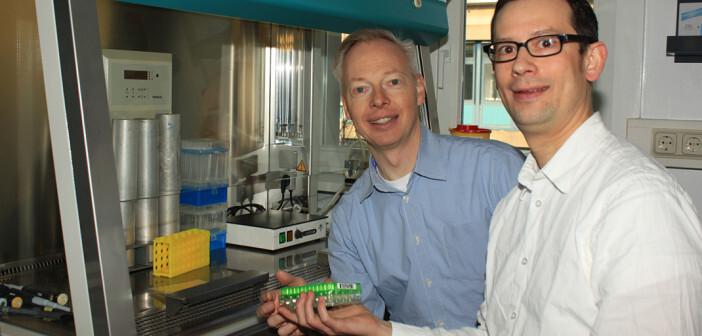 Molekulare Ursache für Herzmuskelschwäche bei Barth-Syndrom entdeckt: Senior- und Erstautor der Publikation Prof. Dr. Peter Rehling (links) und Dr. Jan Dudek.