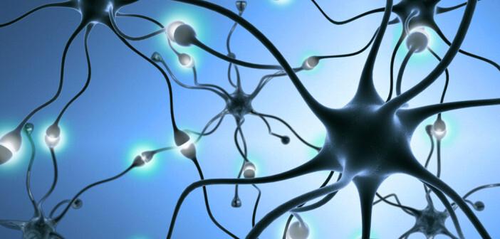Sehr typisch für neuropathische Schmerzen sind brennende Dauerschmerzen sowie vorübergehende elektrisierende Schmerzen. © StudioSmart / shutterstock.com