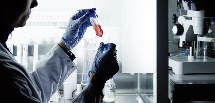 Mit dem Innovation Lab entsteht am MDC eine offene Plattform für Kooperationsprojekte im Bereich Cell Engineering. © Katharina Bohm/MDC