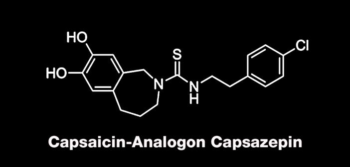 Capsazepin wirkt gegen starke Schmerzen