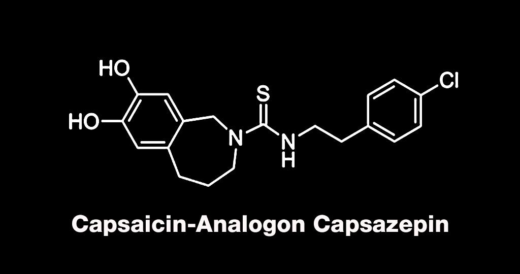 Untersuchung von Capsazepin gegen starke chronische Schmerzen vielversprechend.