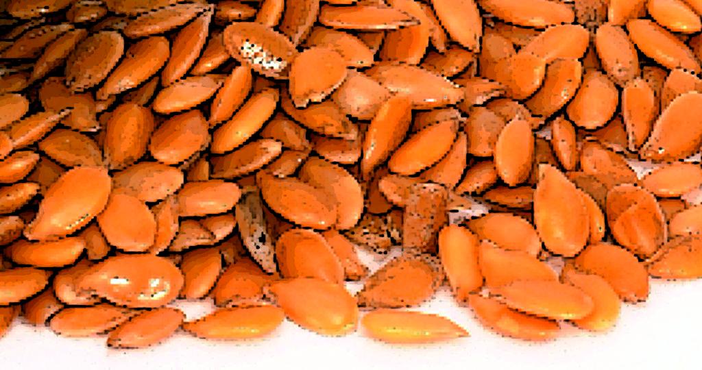 Magnesium und Ernährungsgewohnheiten durchleuchten.