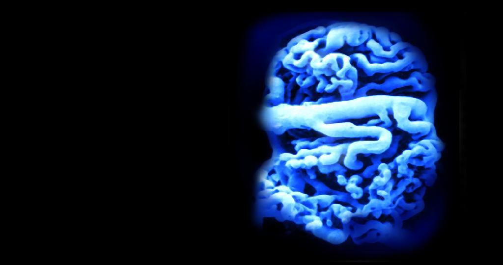 Mikroalbuminurie tritt bereits bei leichten glomerulären Schäden infolge von Hypertonie oder Diabetes mellitus auf.