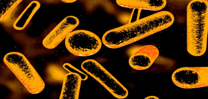 Problem Resistenz gegen Antibiotika weltweit im Fokus.