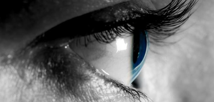 Die Augenlinse ändert ständig ihre Form, um Objekte, die sich in verschiedenen Entfernungen vom Auge befinden, scharf zu sehen. © PHOTOCREO Michal Bednarek / shutterstock.com