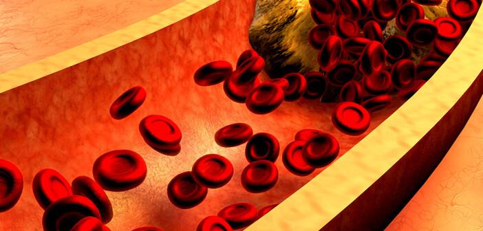 Rezeptoren und ihre Rolle im Lipoproteinstoffwechsel. © Ralwel / shutterstock.com