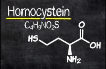 Ein erhöhter Homocysteinwert birgt zahlreiche Risiken für den Körper. © Zerbor / shutterstock.com