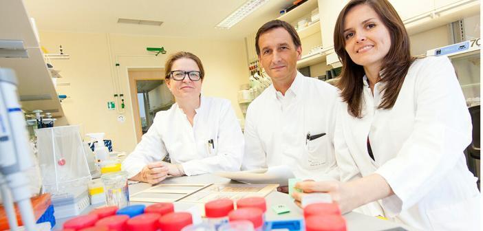 (von links) Dr. Silke Marhenke, Professor Dr. Arndt Vogel und Dr. Laura Buitrago-Molina bei der Auswertung von Ergebnissen. © MHH / Kaiser