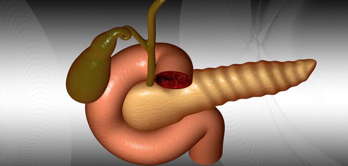 Analgetika und Pankreasenzyme sind die Basis der Behandlung. © Creations / shutterstock.com