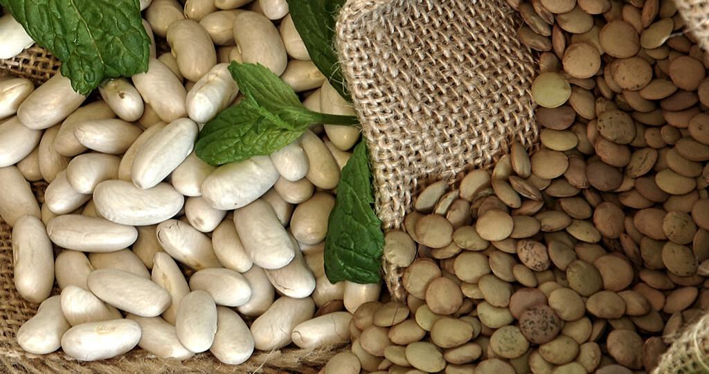In Linsen und weißen Bohnen stecken viele pflanzliche Proteine. © Angela Aladro mella / shutterstock.com