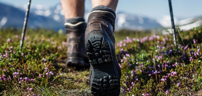 Wie gesund ist Wandern und Bergsport für unseren Körper