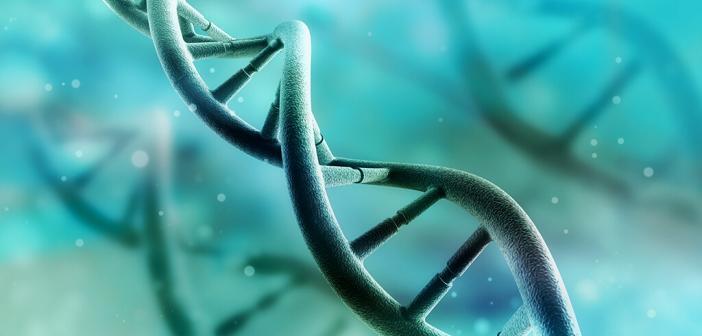 DNA © Adike / shutterstock.com