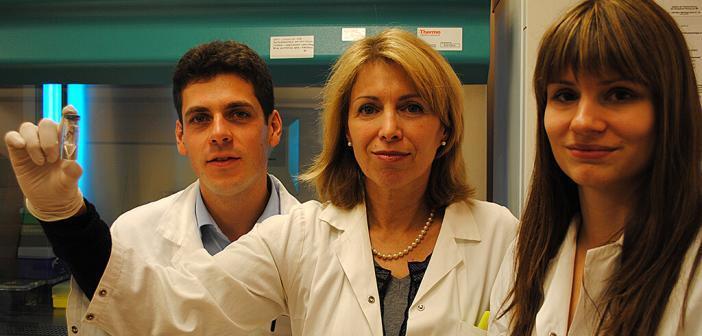 Erika Jensen-Jarolim und ihr Team um Josef Singer und Judit Fazekas zeigten, dass eine künstliche Struktur des Tumorantigens HER2 mit einem viralen Partikel direkt als vorbeugende Impfung gegen Brustkrebs verwendet werden kann. © Erika Jensen-Jarolim