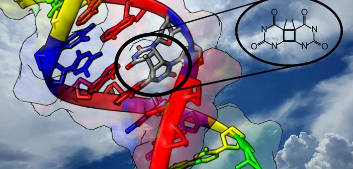 """Durch Einfluss von UV-Strahlung finden Nukleobasen, die Bausteine der DNA, manchmal den falschen Partner. Der Mechanismus dieses """"Seitensprungs"""" konnte jetzt geklärt werden © Clemens Rauer / Universität Wien"""