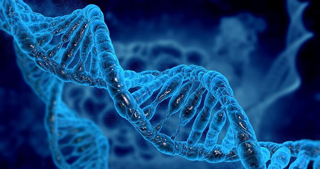 Gene / DNA. © vitstudio / shutterstock.com