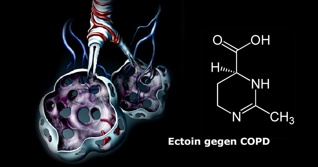 Ectoin gegen COPD © AMM-Afcom / Jü / CC0