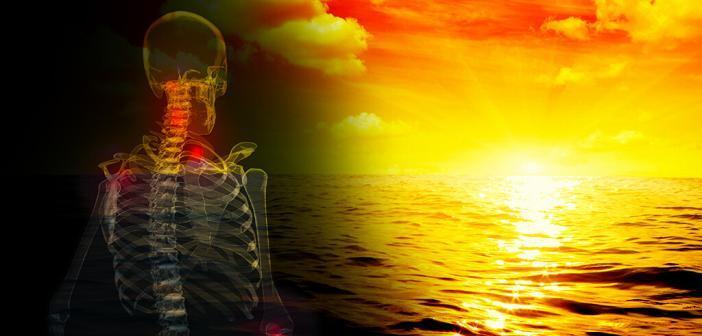 Vitamin D – das Sonnenhormon.