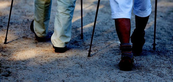 Walking © racorn / shutterstock.com
