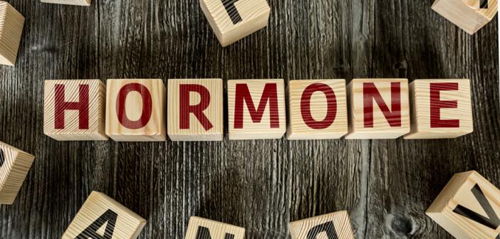 Von ganz besonderer Bedeutung sind die gastrointestinalen Hormone dann, wenn sie in großem Überschuss in der Zirkulation auftauchen. © gustavo frazao / shutterstock.com