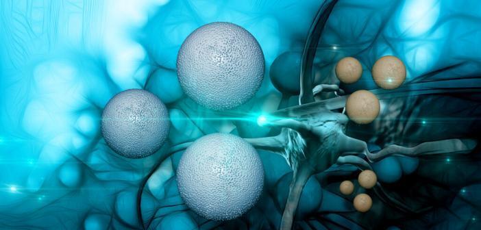 Tumorzellen © Jovan Vitanovski / shutterstock.com