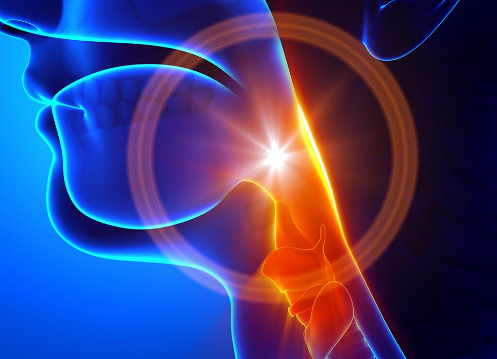 Halsschmerzen können effektiv behandlet werden und sind meist harmlos. © decade3d-anatomy-online / shutterstock.com