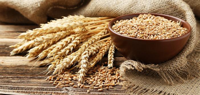 Gesucht Reizdarmpatienten, die an der Studie zur Weizenunverträglichkeit teilnehmen möchten. © 5 Second Studio / shutterstock.com