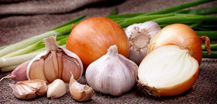Die Bestandteile von Knoblauch und Zwiebel werden wegen verschiedener protektiver Wirkungen sehr intensiv erforscht. © timmary / shutterstock.com