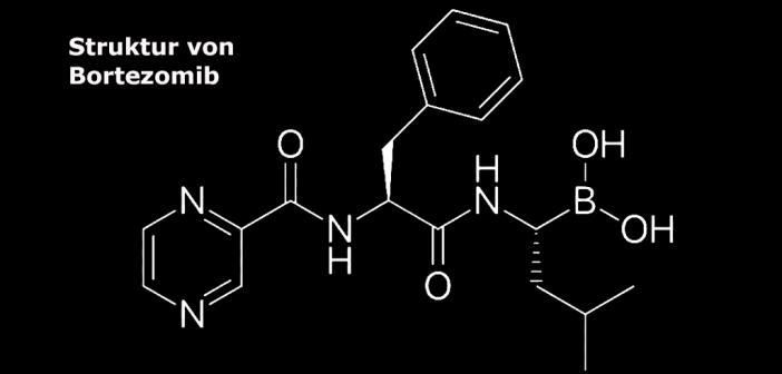 Proteasominhibitor Bortezomib bei Anti-NMDA-Rezeptor-Enzephalitis vielversprechend. © Fvasconcellos / wikimedia