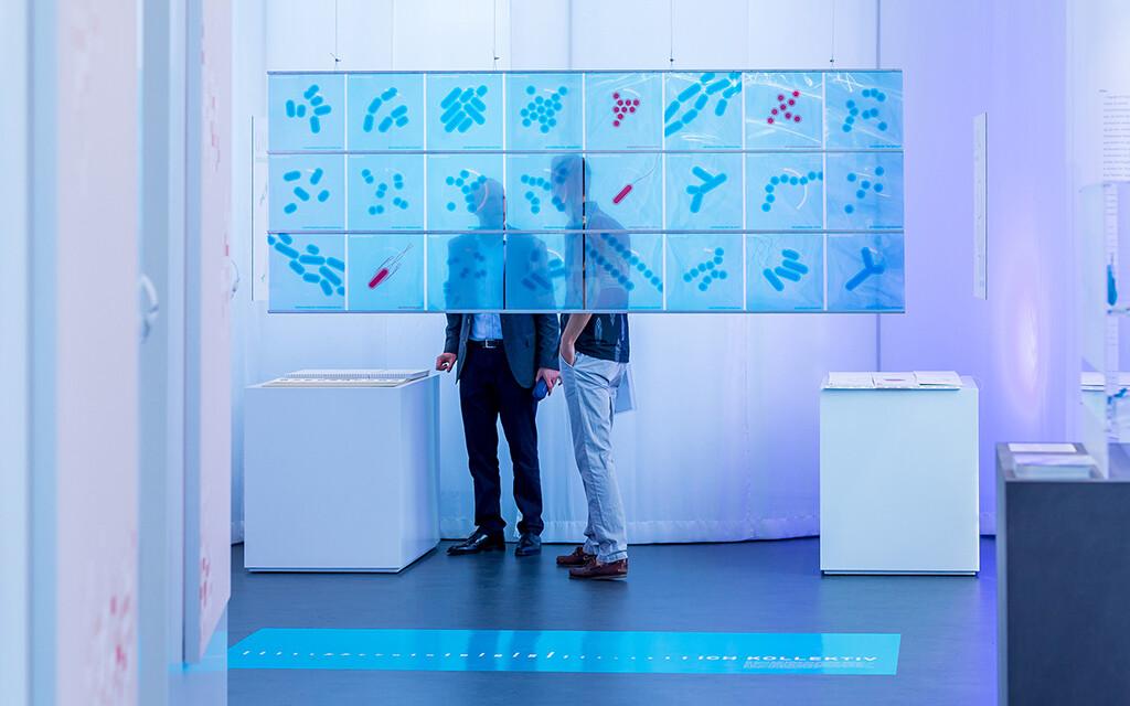 """""""Ich Kollektiv"""". Die Installation zeigt prominente Bakterien der drei Lebensräume Haut, Mundhöhle und Darmtrakt. So schafft sie ein Bewusstsein für Bakterien als einen wichtigen Bestandteil des Individuums Mensch. © Sascha Klahn / Exzellenzcluster Entzündungsforschung"""