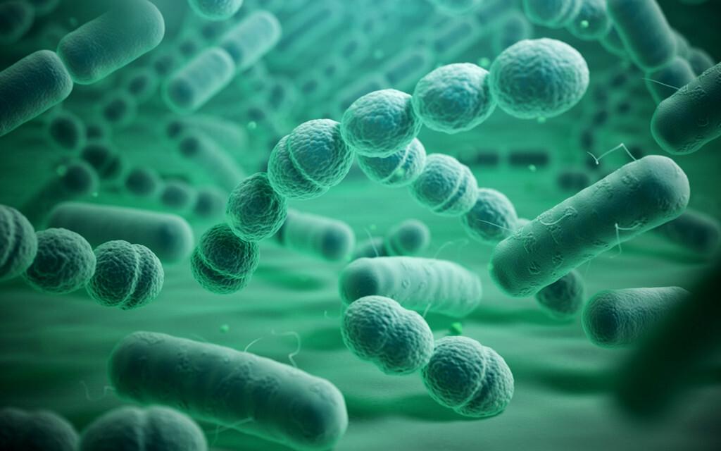 Bakterien © Maxx-Studio / shutterstock.com