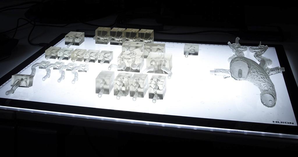 Ein Display mit 3D-Arterienmodellen unterschiedlicher Größen aus Klarharz mit einer Auflösung von 0,05 mm.
