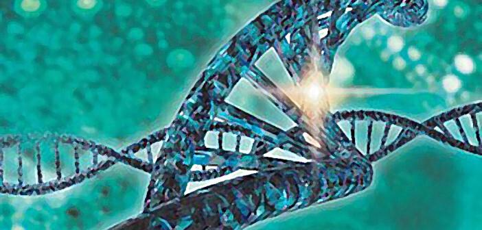 Merck erwartet Patentierung ihrer CRISPR-Technologie. © PRNewsfoto / Merck