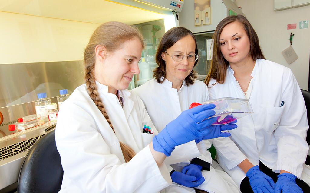 Dr. Saskia C. Stein, Professorin Dr. Christine Josenhans und Eugenia Faber (von links) im Labor. © MHH / Kaiser