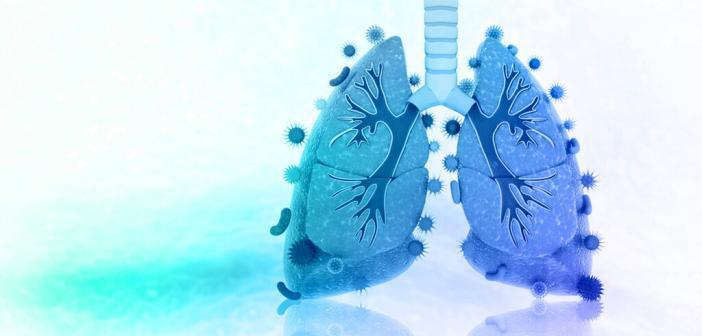 Lunge Mikrobiom © crystal light / shutterstock.com