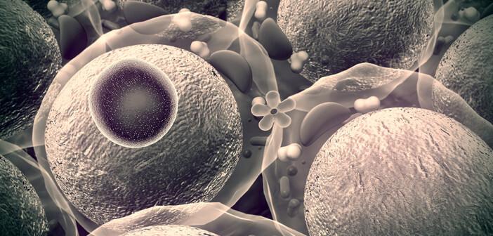 Insulin, Glucose, Menschliches Insulin © UGREEN 3 / shutterstock.com
