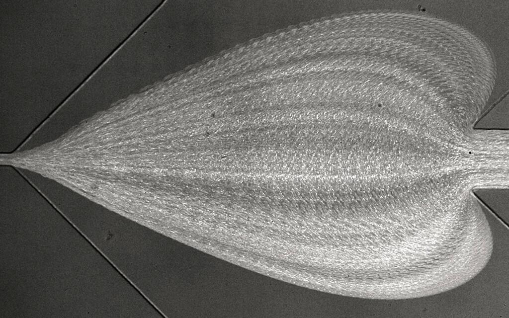 """Schnelle Diagnose von Krankheiten mit RT-DC in Aktion. Die künstlerische Darstellung des mikroskopischen Blicks in den Messchip zeigt die Flußbahnen vieler einzelner Blutkörperchen, die von rechts nach links fließen. Wo der Hüllstrom von oben und unten einfliesst, verbreitern sie sich zu einem """"Herz"""", bevor sie in den schmalen Messkanal links eindringen, wo das Erscheinungsbild und die Deformation der Zellen analysiert werden. © Daniel Klaue / ZELLMECHANIK DRESDEN GmbH"""
