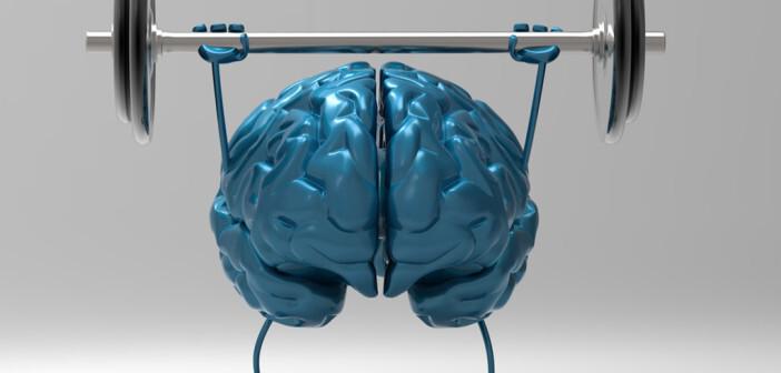 Gehirn – geistig fit © Julien Tromeur / shutterstock.com