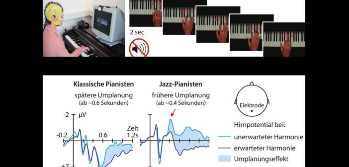 Die Pianisten spielten eine Abfolge von Akkorden, die sie auf einem Bildschirm zu sehen bekamen. Dabei wurde mithilfe einer EEG-Kappe getestet, wie flexibel ihr Gehirn auf eingebaute Fehler reagiert. Hier zeigten sich unterschiedliche Hirnprozesse: Durch die trainierte Flexibilität planten Jazz-Pianisten schneller um als sie einen unerwarteten Akkord sahen als klkassische Pianisten. © Max-Planck-Institut für Kognitions- und Neurowissenschaften