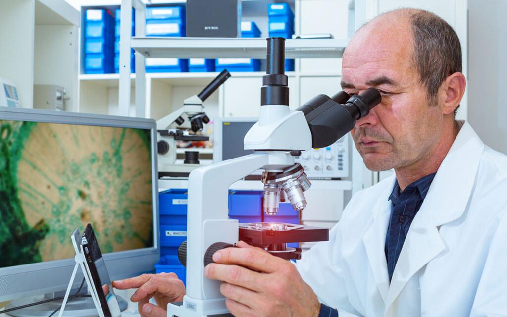 Digitale Mikroskopie / Virtuelle Mikroskopie / Digitale Pathologie © science photo / shutterstock.com