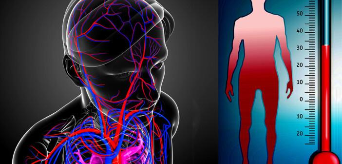 Milde therapeutische Hypothermie nach außerklinischem Kreislaufstillstand im Blicklicht. @ (Montage) S K Chavan / Double Brain / shutterstock.com