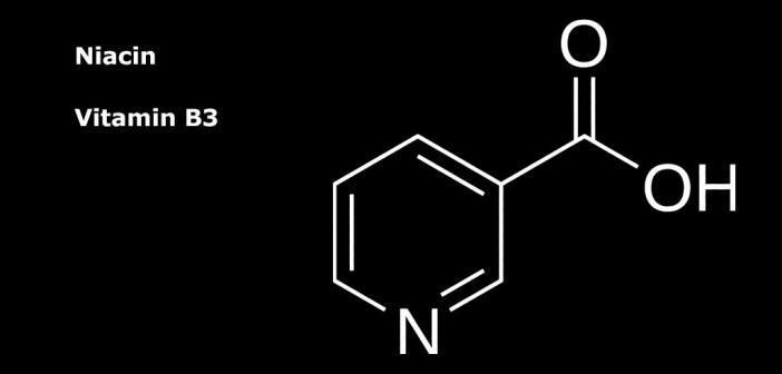 Vitamin Niacin kann Zusammensetzung des Darmmikrobioms und den Zuckerhaushalt verändern.