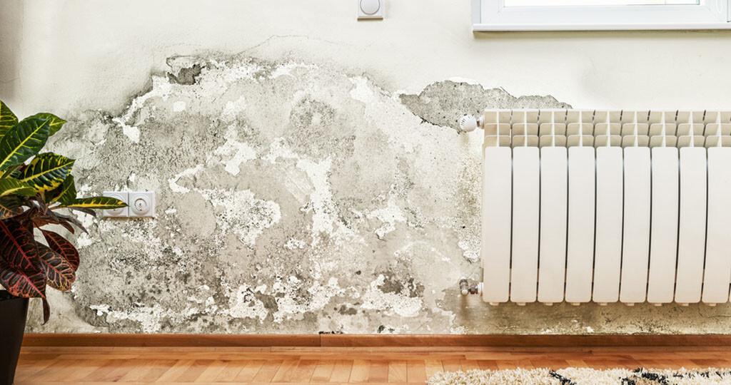 Feuchte Wohnungen stellen für Kinder ein großes Gesundheitsrisiko dar. © jocic / shutterstock.com