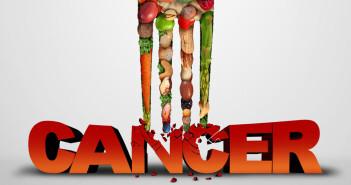 Ernährung bei Krebs © Lightspring / shutterstock.com