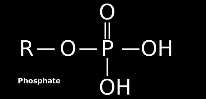 Phosphate – Strukturformel. © Trengarasu / CC 3.0 / wikimedia