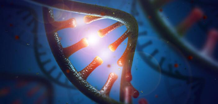 RNA © ktsdesign / shutterstock.com