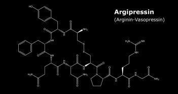 Argipressin – Strukturformel Arginin-Vasopressin © Raimundo79 / shutterstock.com