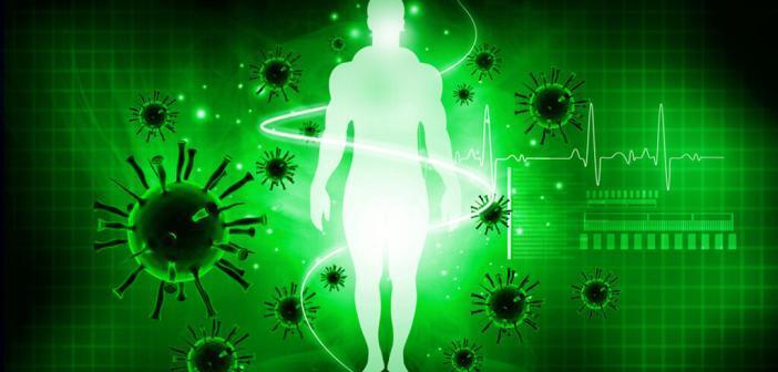 Immunsystem © bluebay / shutterstock.com
