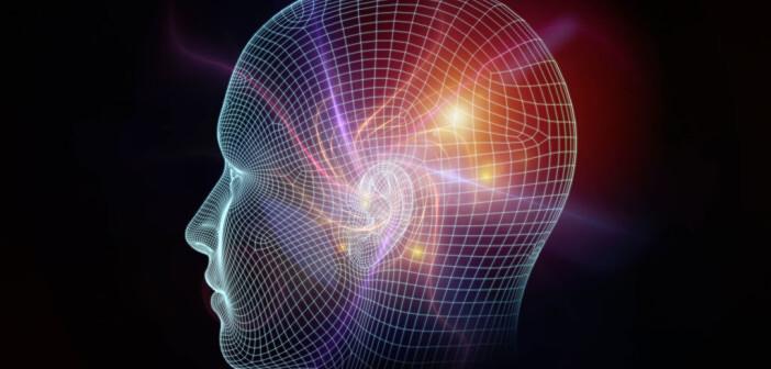 Rasterzellen / Gitterzellen im Gehirn © agsandrew /