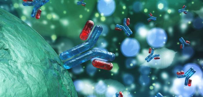IGG4-assoziierte Erkrankung durch IgG-Antikörper. © ustas7777777 / shutterstock.com