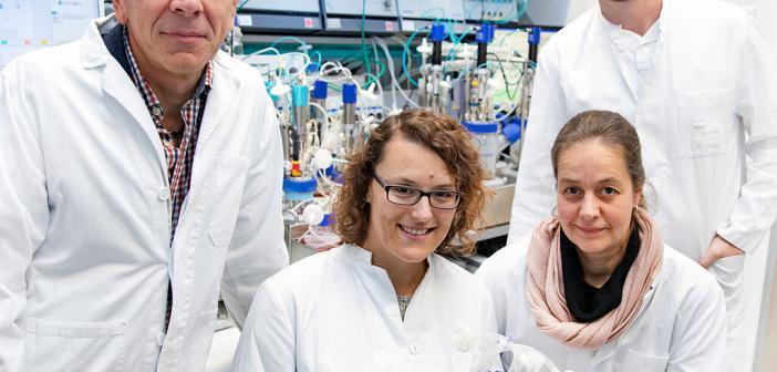 Dr. Robert Zweigerdt, Dr. Mania Ackermann, Dr. Antje Munder und PD Dr. Nico Lachmann produzieren Blutzellen im Labor. © MHH / Kaiser